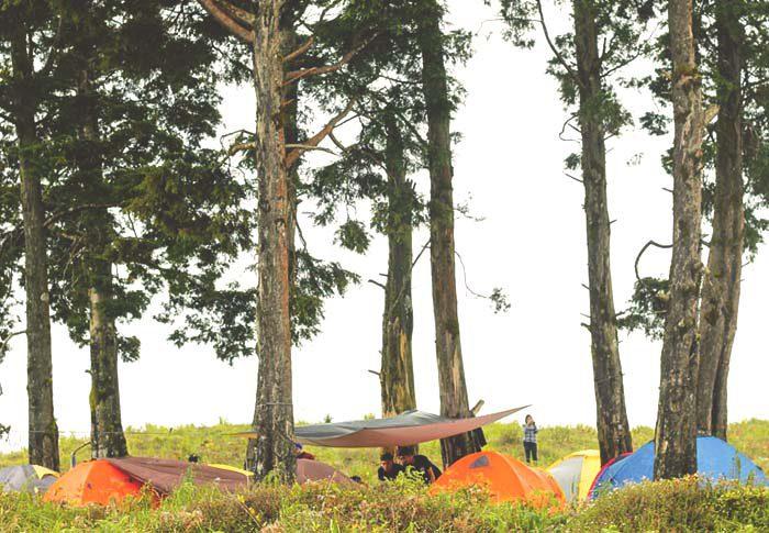 trip wisata gunung prau murah