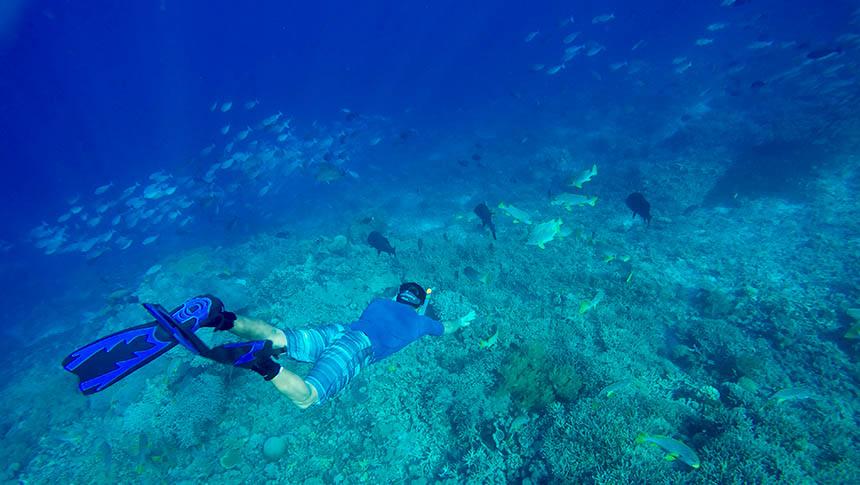 trip pulau menjangan bali barat